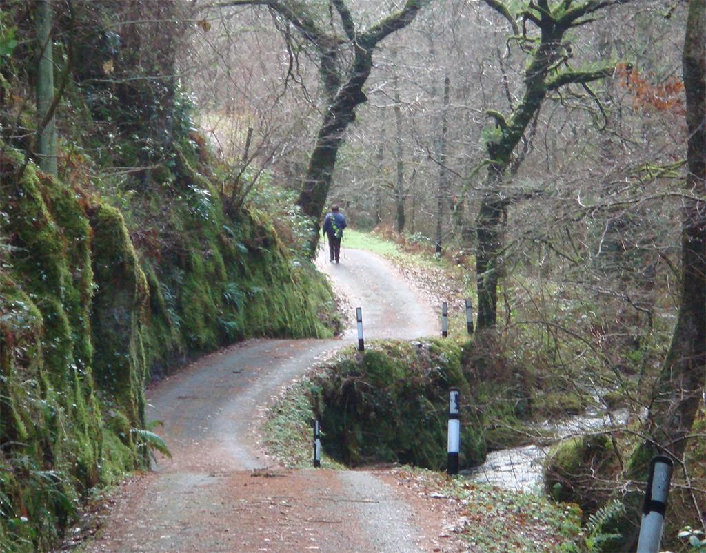 kronkelweg Wales