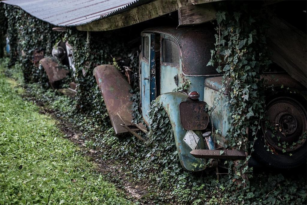 overgroeide barn find collectie